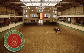 Cours d'équitation à UCCLE